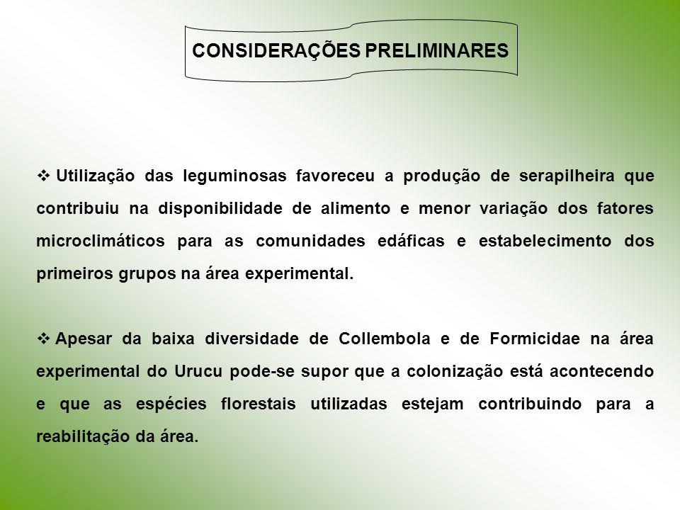 CONSIDERAÇÕES PRELIMINARES