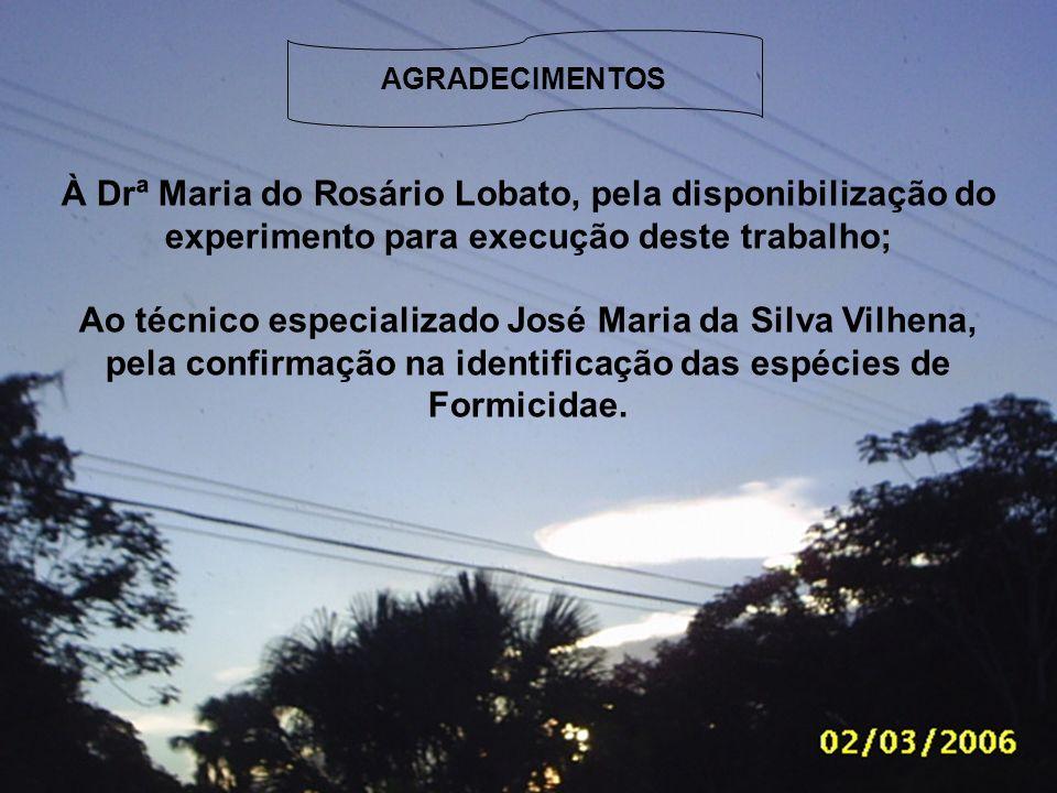 AGRADECIMENTOS À Drª Maria do Rosário Lobato, pela disponibilização do experimento para execução deste trabalho;