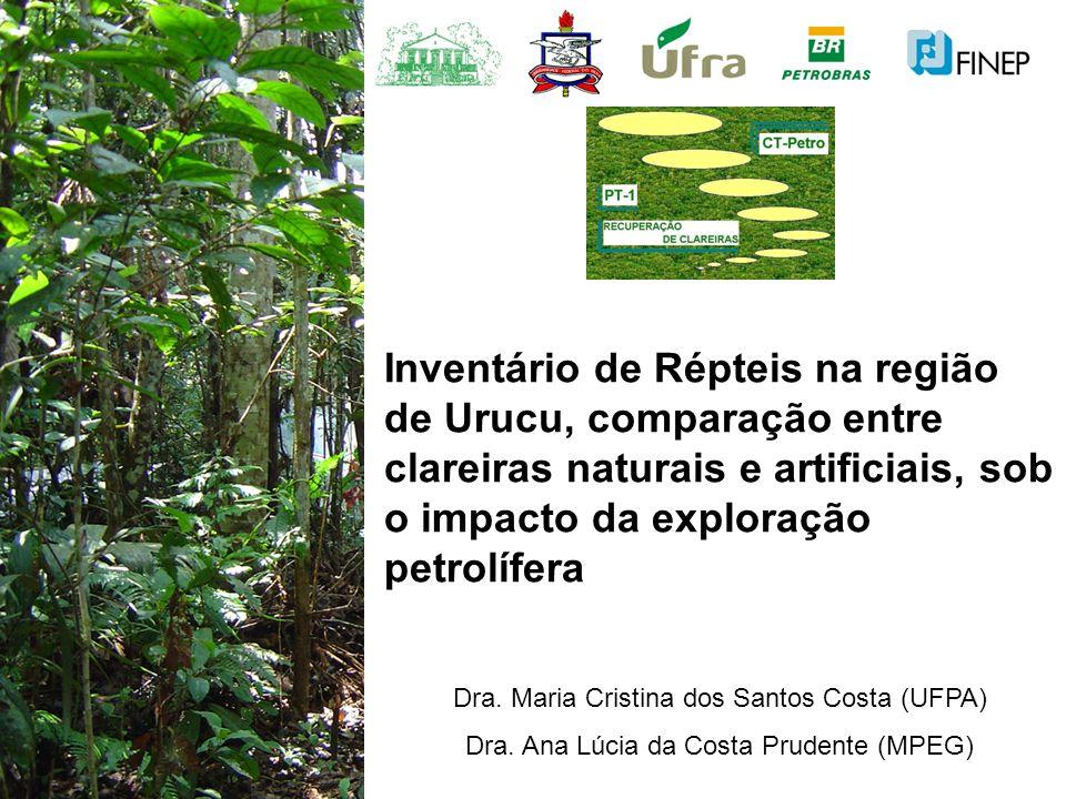 Inventário de Répteis na região de Urucu, comparação entre clareiras naturais e artificiais, sob o impacto da exploração petrolífera
