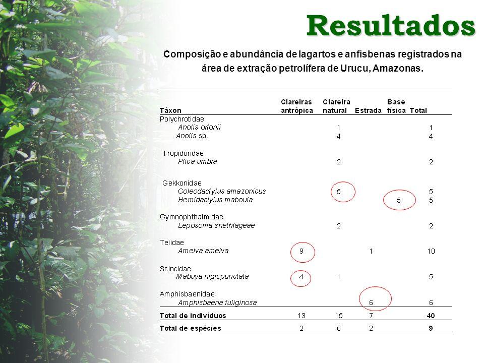 ResultadosComposição e abundância de lagartos e anfisbenas registrados na área de extração petrolífera de Urucu, Amazonas.