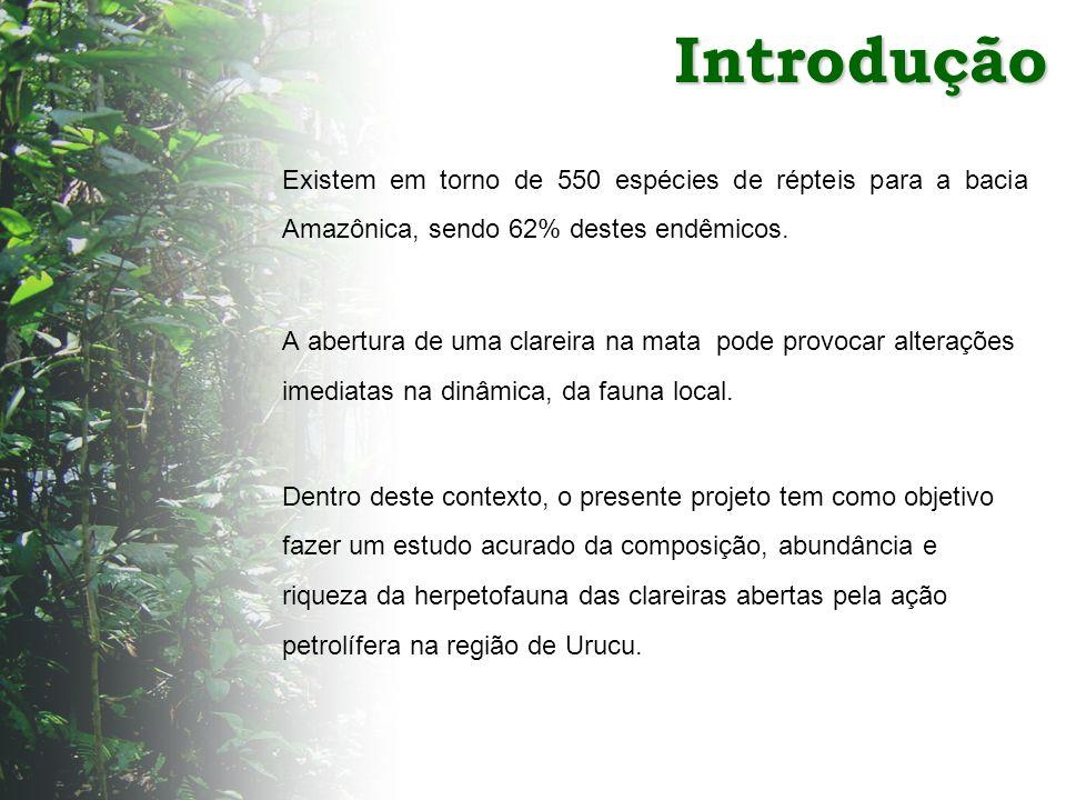 Introdução Existem em torno de 550 espécies de répteis para a bacia Amazônica, sendo 62% destes endêmicos.