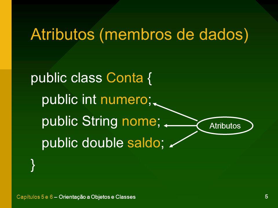Atributos (membros de dados)
