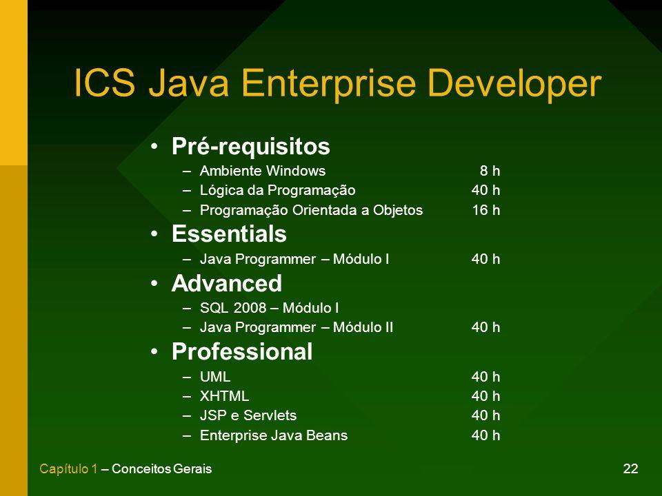 ICS Java Enterprise Developer