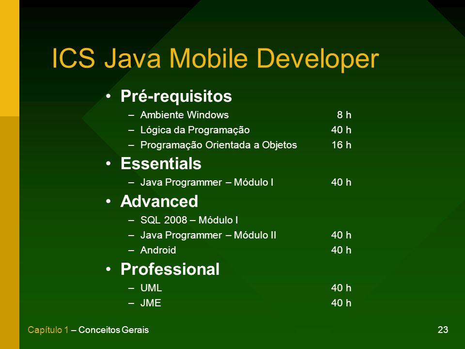 ICS Java Mobile Developer