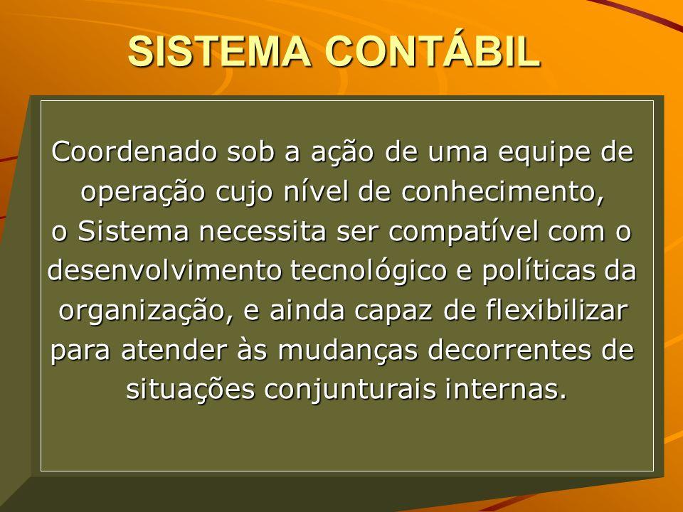 SISTEMA CONTÁBIL Coordenado sob a ação de uma equipe de