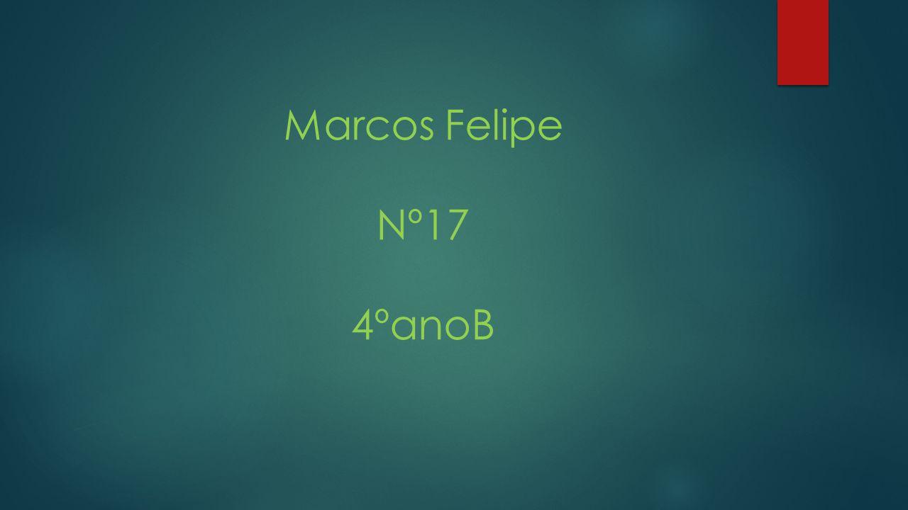 Marcos Felipe Nº17 4ºanoB