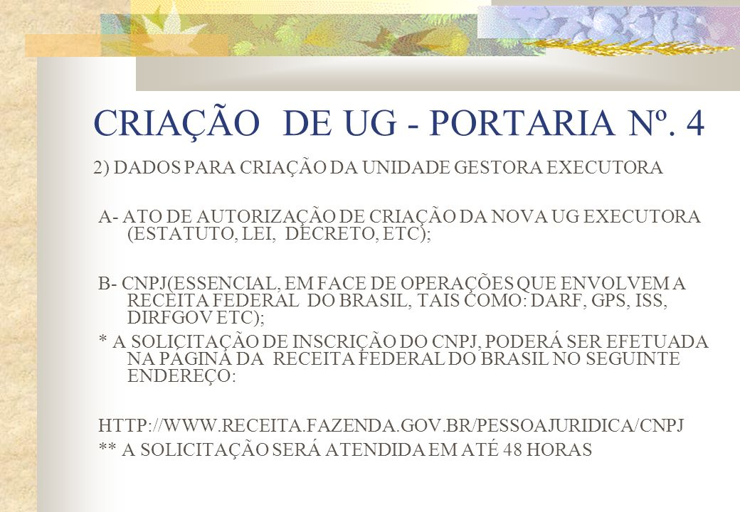 CRIAÇÃO DE UG - PORTARIA Nº. 4
