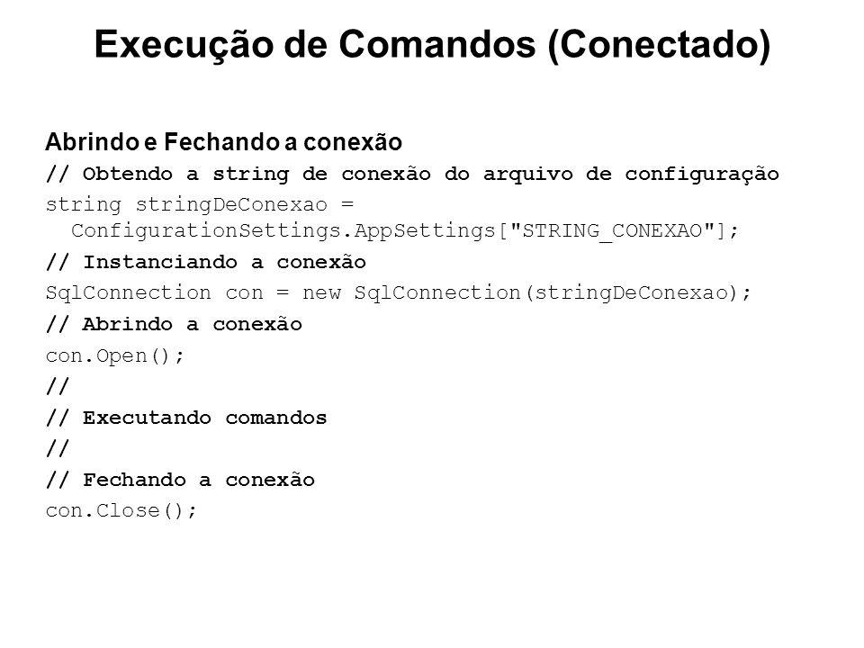 Execução de Comandos (Conectado)