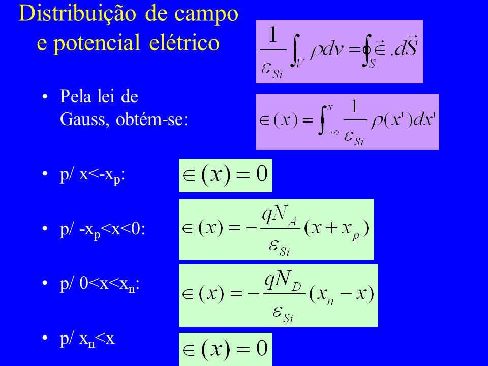 Distribuição de campo e potencial elétrico