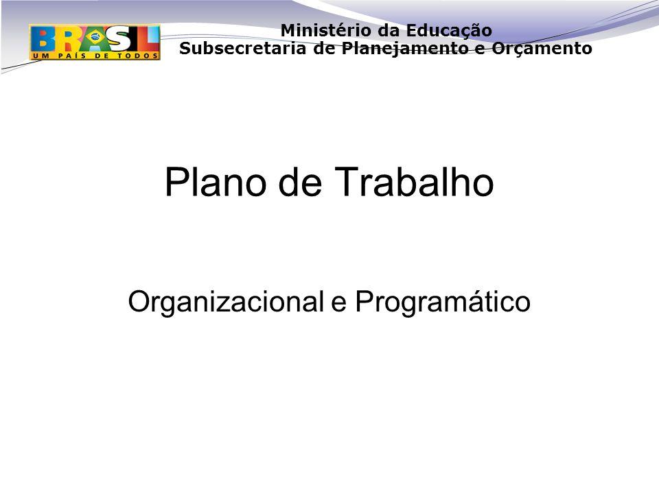 Organizacional e Programático