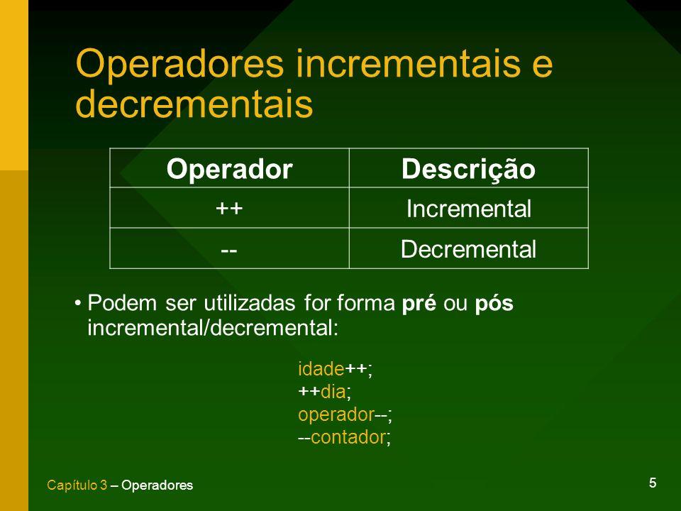 Operadores incrementais e decrementais