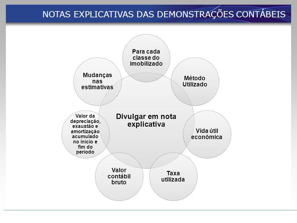 NOTAS EXPLICATIVAS DAS DEMONSTRAÇÕES CONTÁBEIS