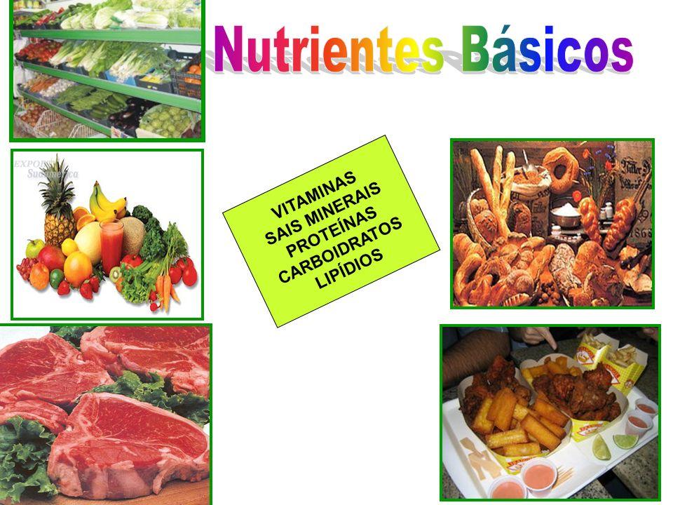 Nutrientes Básicos VITAMINAS SAIS MINERAIS PROTEÍNAS CARBOIDRATOS