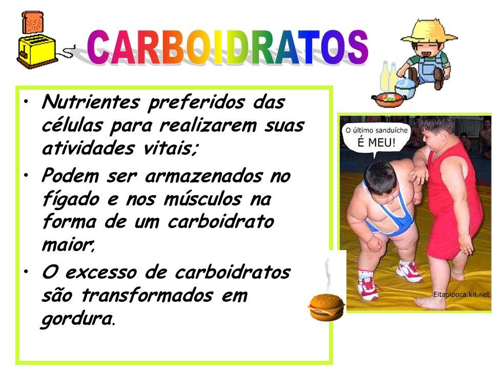 CARBOIDRATOS Nutrientes preferidos das células para realizarem suas atividades vitais;
