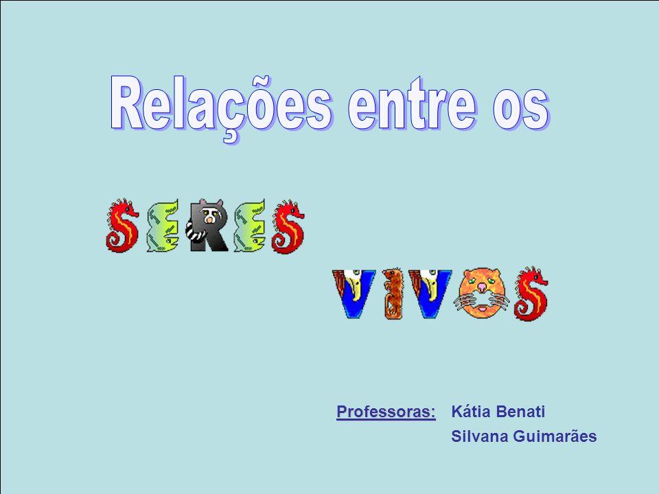 Relações entre os Professoras: Kátia Benati Silvana Guimarães