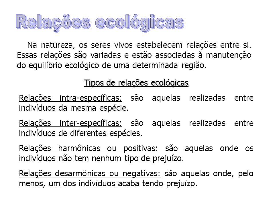Tipos de relações ecológicas