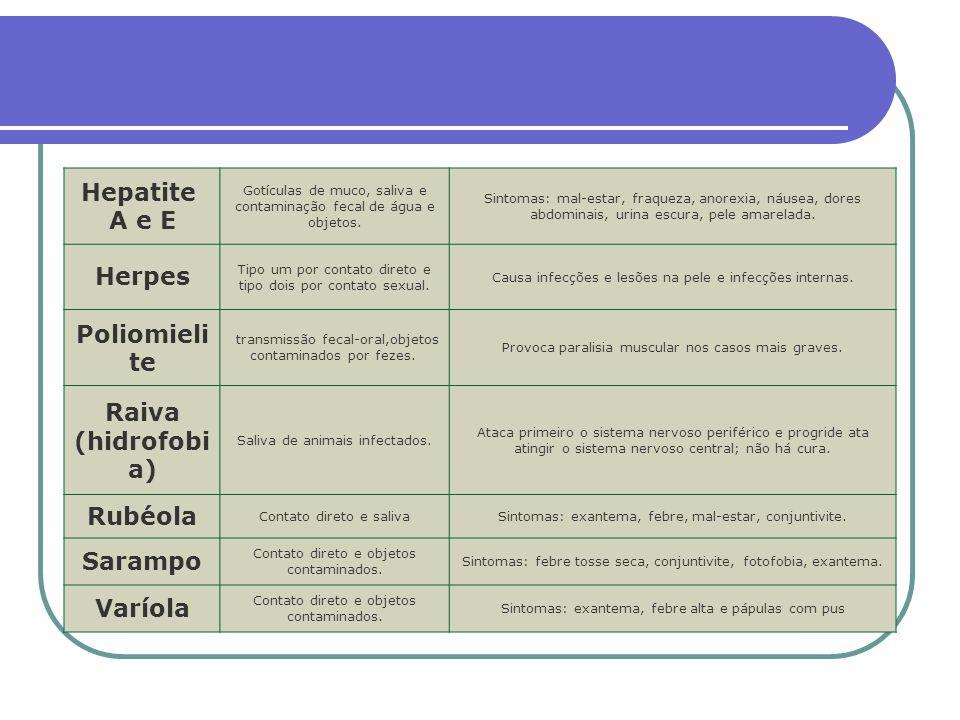 Hepatite A e E Herpes Poliomielite Raiva (hidrofobia) Rubéola Sarampo