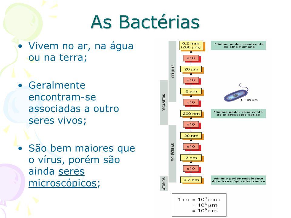 As Bactérias Vivem no ar, na água ou na terra;