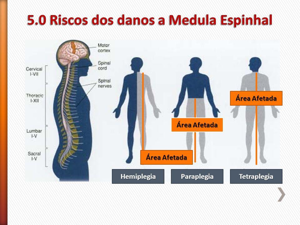 5.0 Riscos dos danos a Medula Espinhal