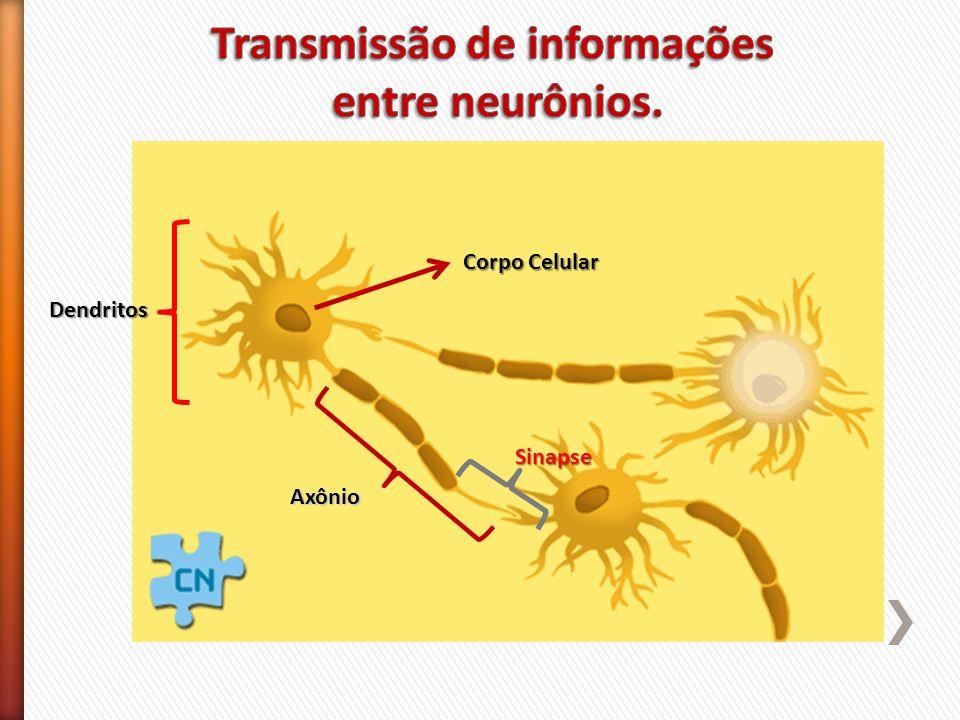 Transmissão de informações
