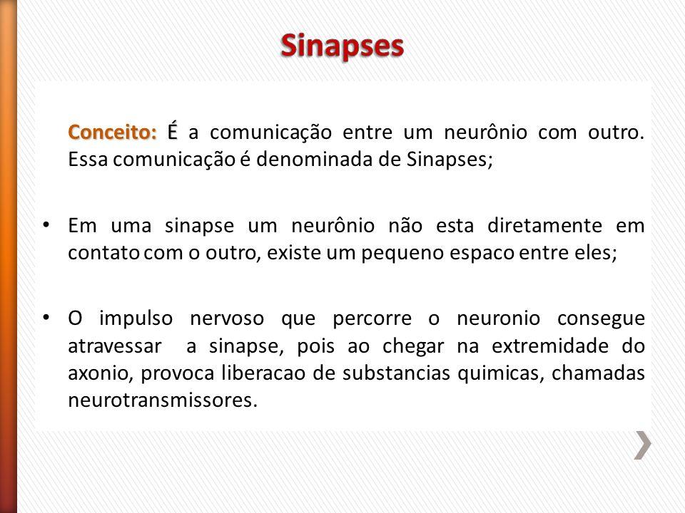 Sinapses Conceito: É a comunicação entre um neurônio com outro. Essa comunicação é denominada de Sinapses;