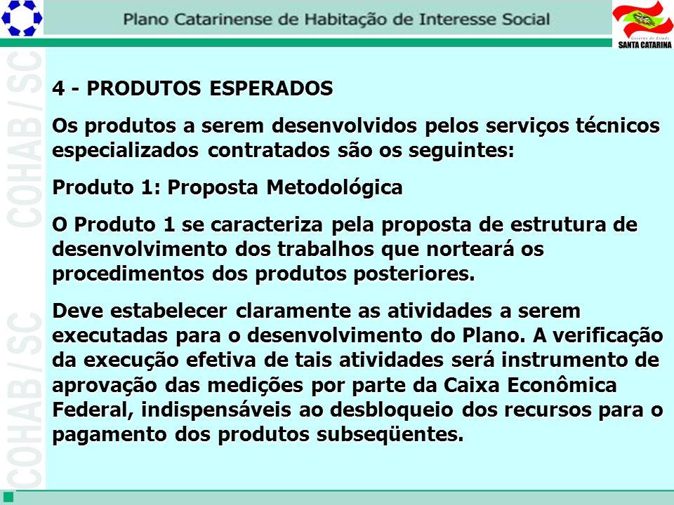 4 - PRODUTOS ESPERADOS Os produtos a serem desenvolvidos pelos serviços técnicos especializados contratados são os seguintes: