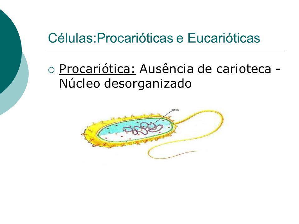 Células:Procarióticas e Eucarióticas