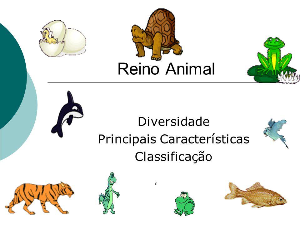 Diversidade Principais Características Classificação