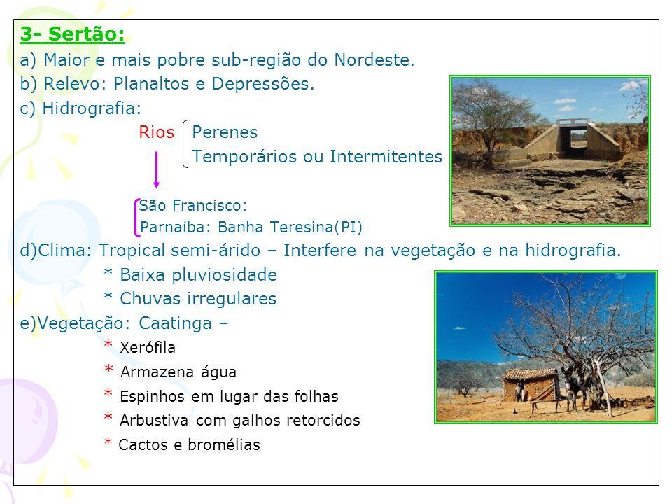 3- Sertão: a) Maior e mais pobre sub-região do Nordeste.