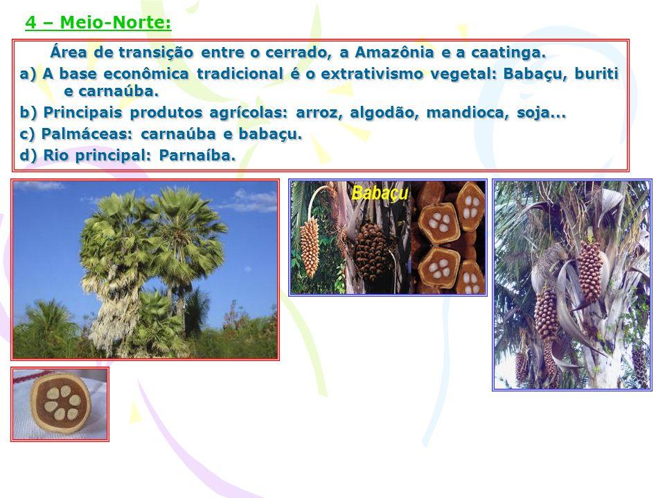 4 – Meio-Norte: Área de transição entre o cerrado, a Amazônia e a caatinga.