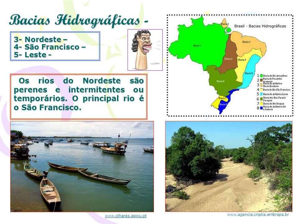 Bacias Hidrográficas -