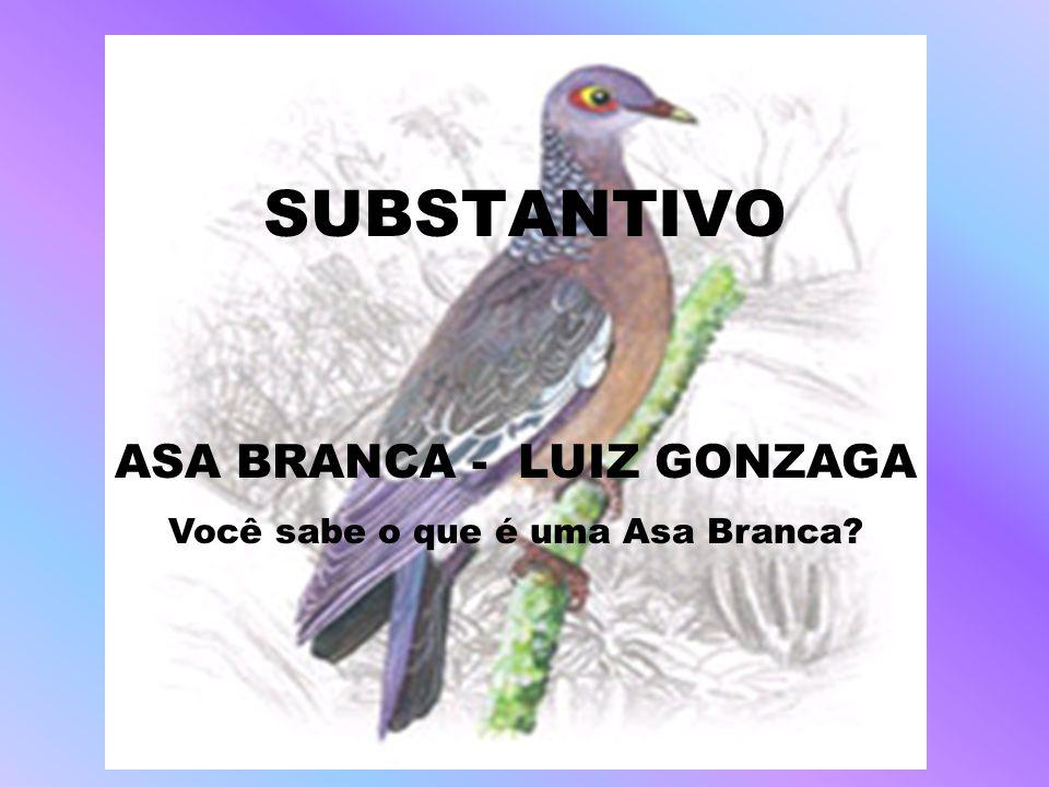 ASA BRANCA - LUIZ GONZAGA Você sabe o que é uma Asa Branca