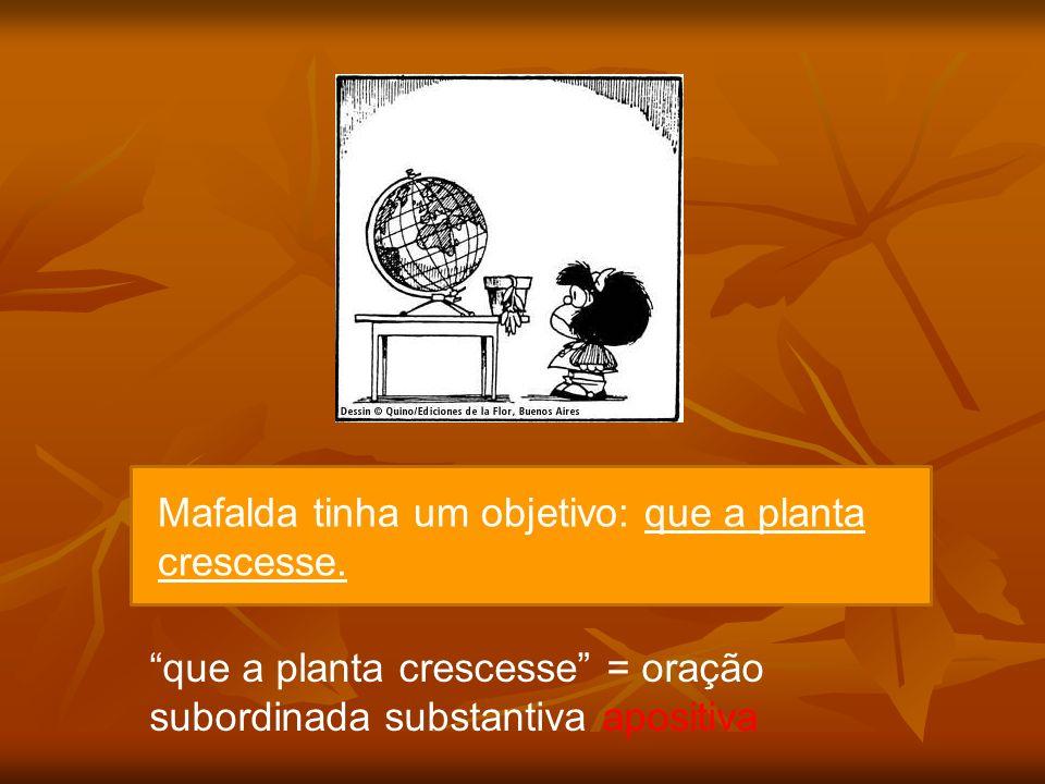 Mafalda tinha um objetivo: que a planta crescesse.