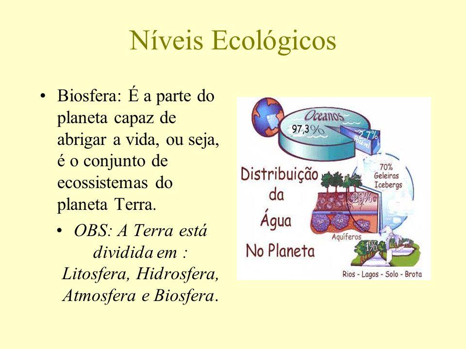 Níveis Ecológicos Biosfera: É a parte do planeta capaz de abrigar a vida, ou seja, é o conjunto de ecossistemas do planeta Terra.