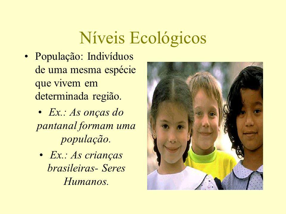 Níveis EcológicosPopulação: Indivíduos de uma mesma espécie que vivem em determinada região. Ex.: As onças do pantanal formam uma população.