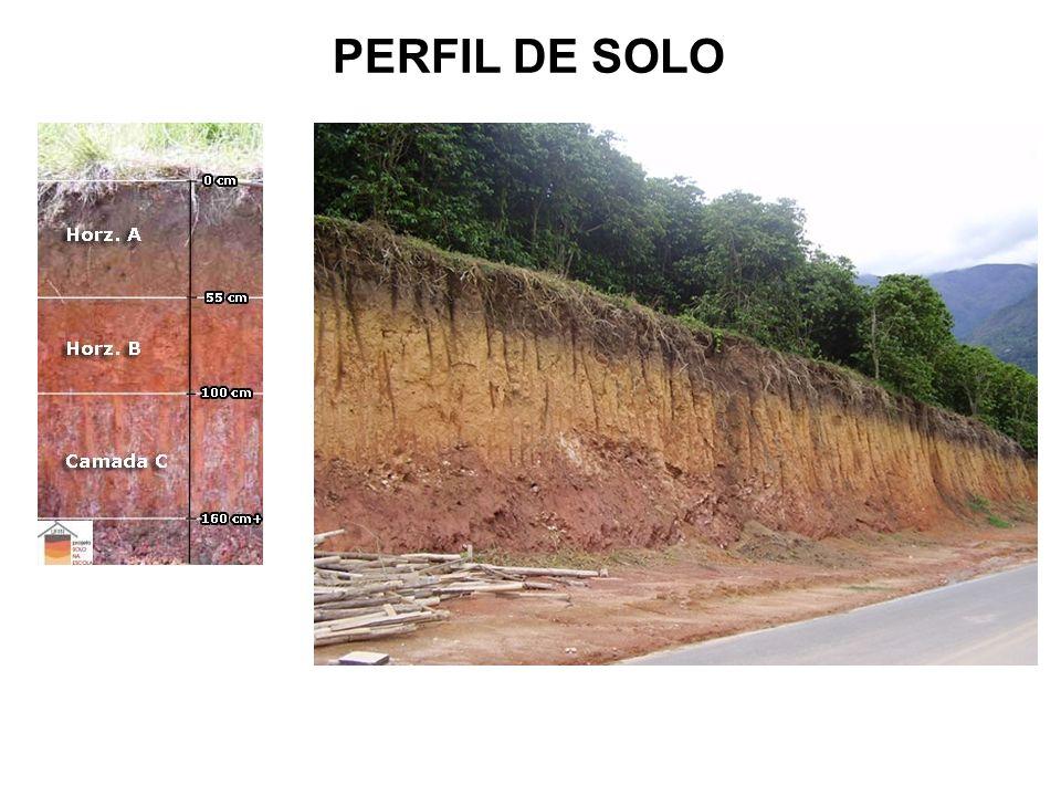 PERFIL DE SOLO