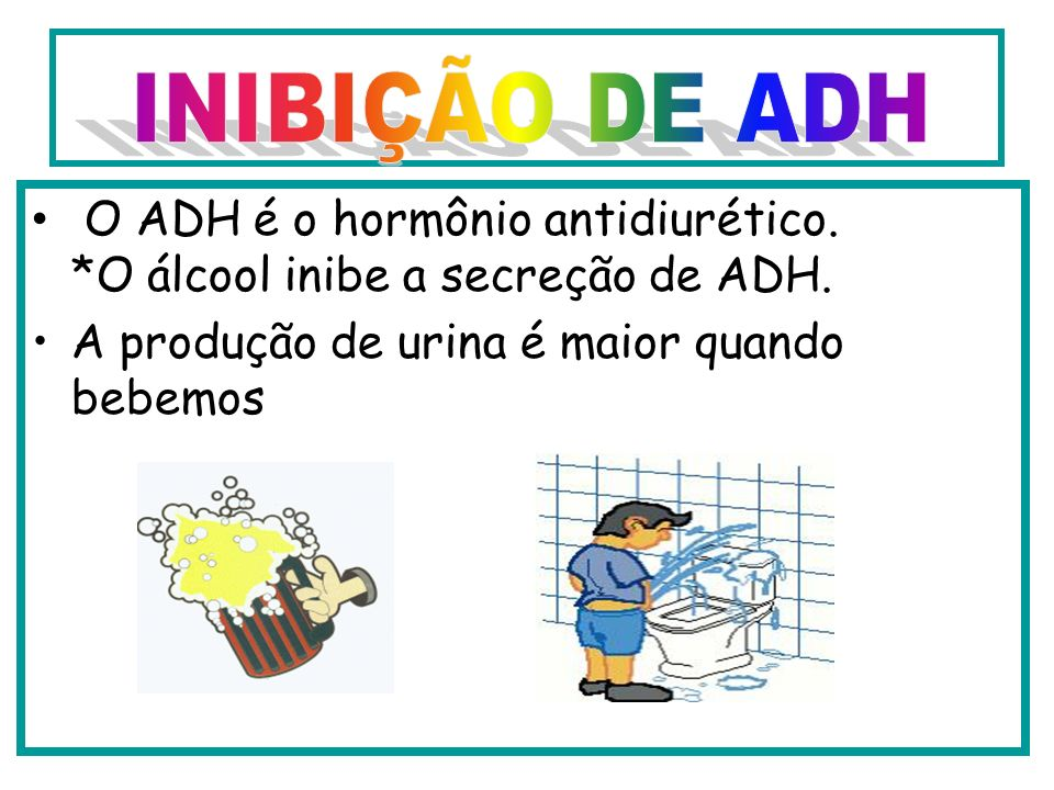 INIBIÇÃO DE ADH O ADH é o hormônio antidiurético. *O álcool inibe a secreção de ADH.