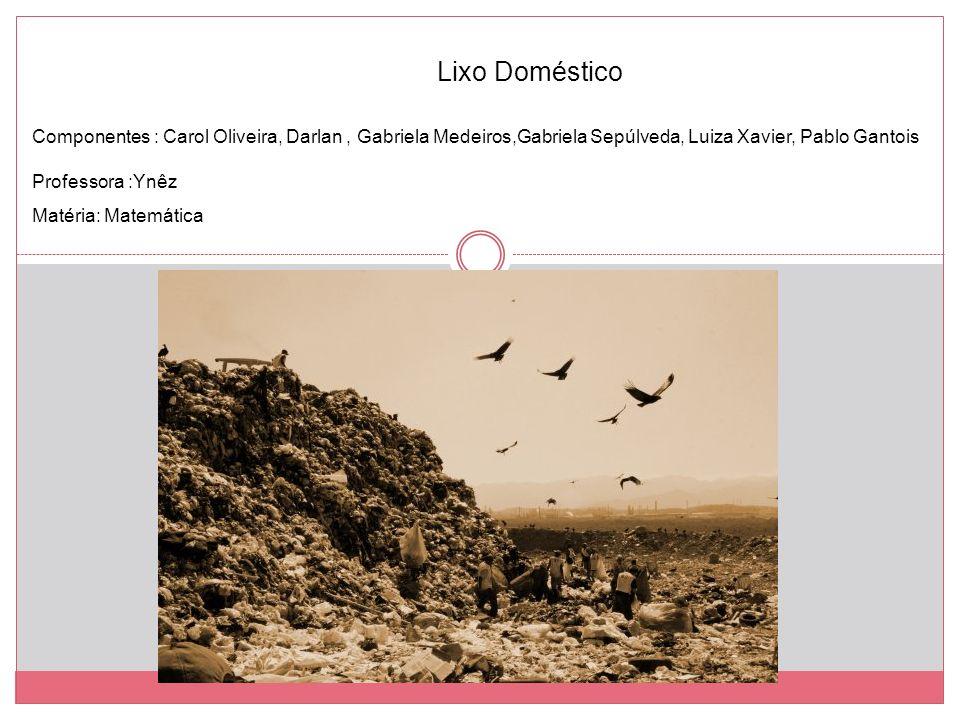 Lixo Doméstico Componentes : Carol Oliveira, Darlan , Gabriela Medeiros,Gabriela Sepúlveda, Luiza Xavier, Pablo Gantois.