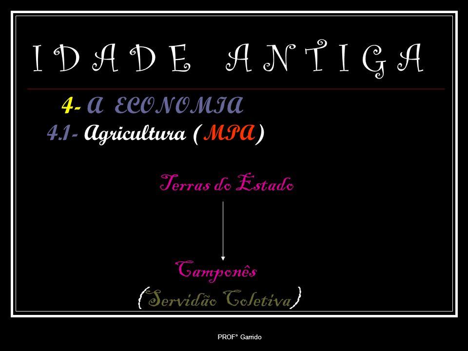 I D A D E A N T I G A Camponês (Servidão Coletiva)