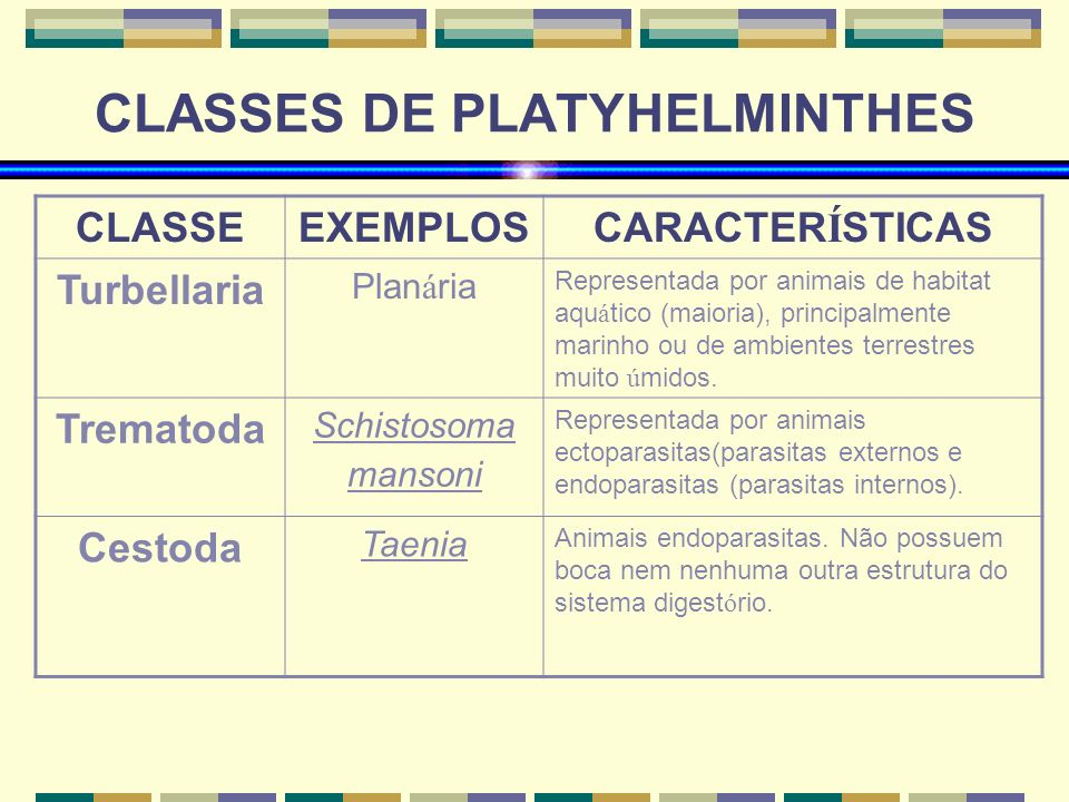 CLASSES DE PLATYHELMINTHES
