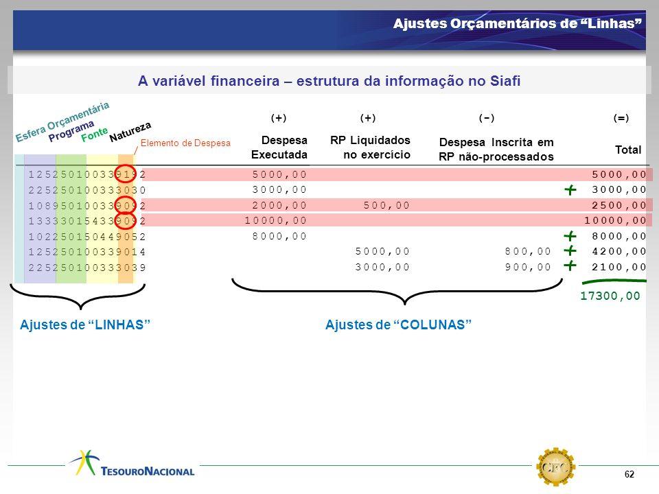 A variável financeira – estrutura da informação no Siafi