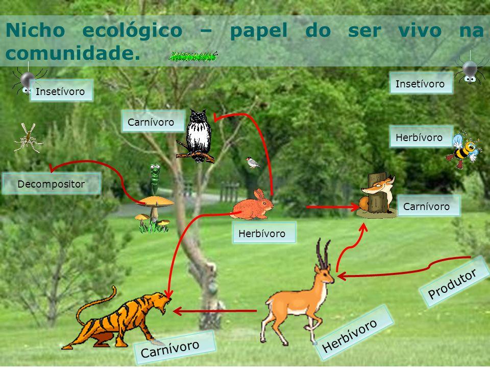 Nicho ecológico – papel do ser vivo na comunidade.