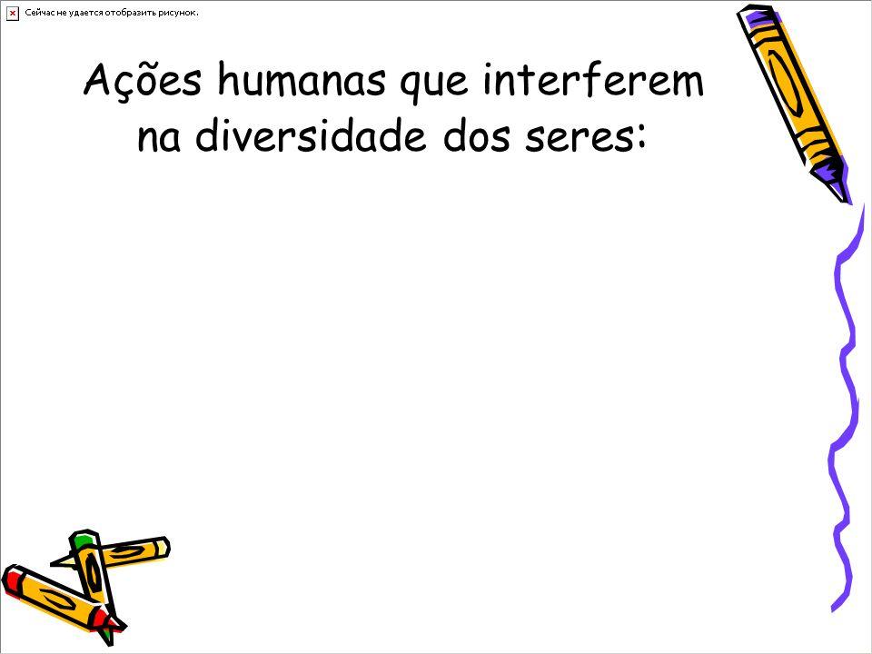 Ações humanas que interferem na diversidade dos seres: