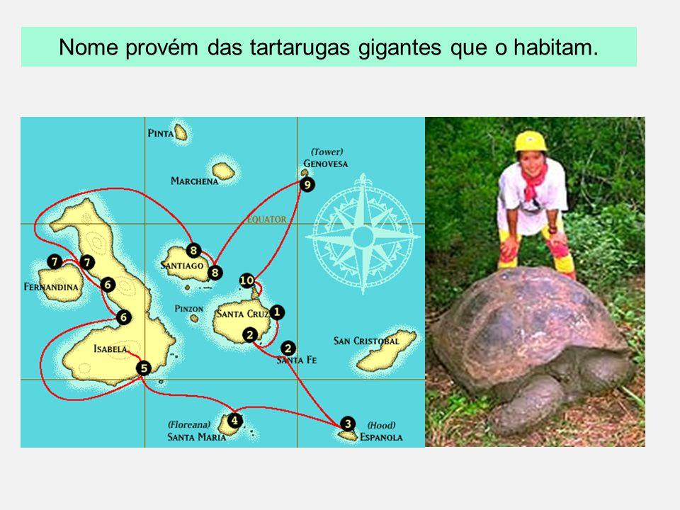 Nome provém das tartarugas gigantes que o habitam.