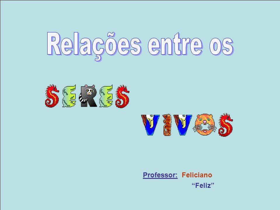 Relações entre os Professor: Feliciano Feliz