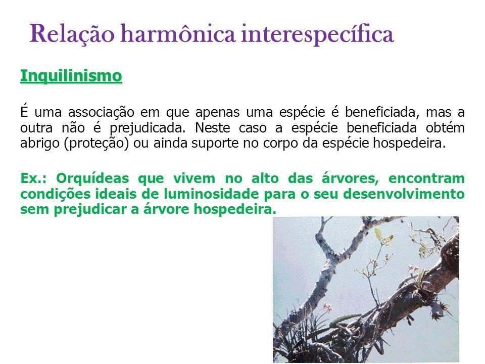 Relação harmônica interespecífica