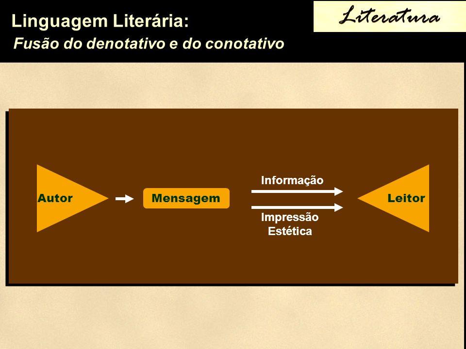 Literatura Fusão do denotativo e do conotativo Mensagem Informação