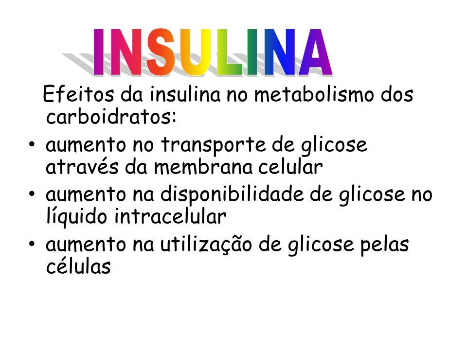 INSULINA Efeitos da insulina no metabolismo dos carboidratos: