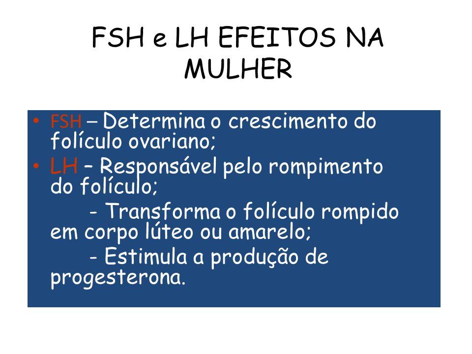 FSH e LH EFEITOS NA MULHER