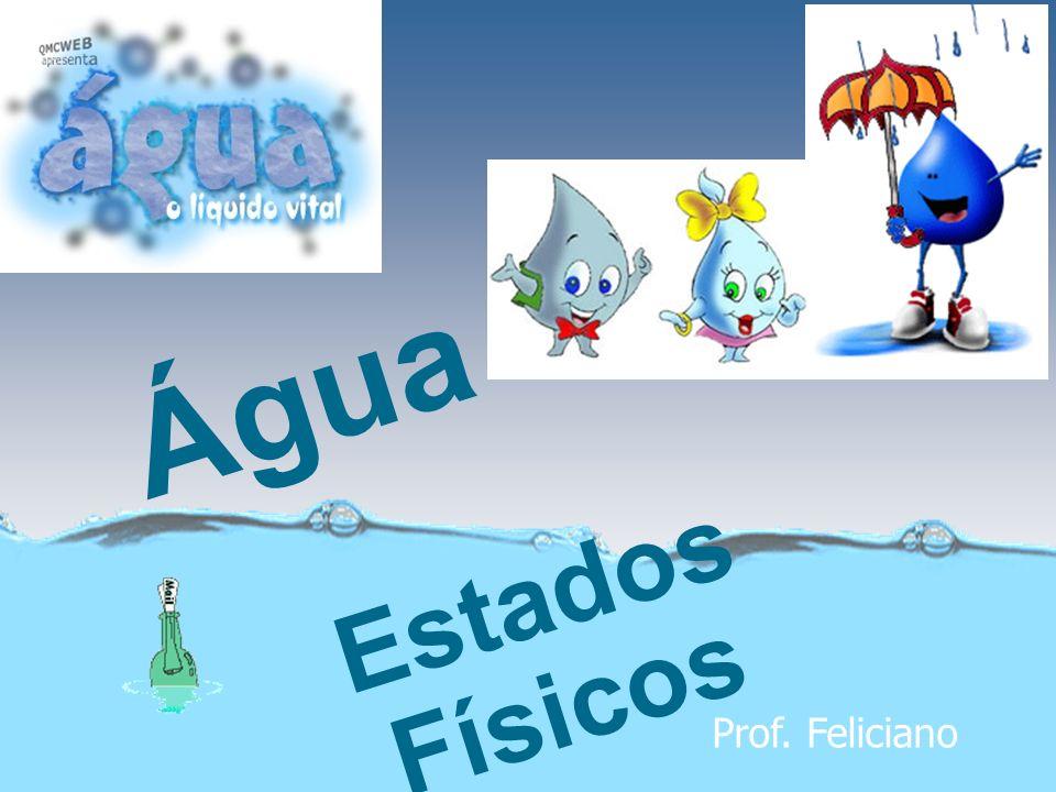 Água Estados Físicos Prof. Feliciano